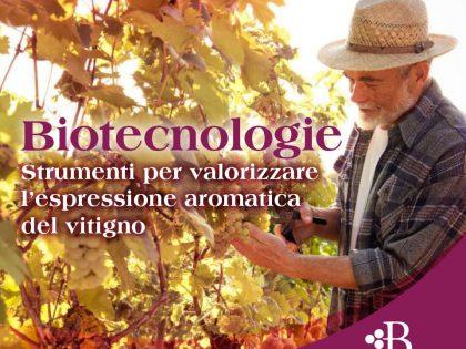 Biotecnologie, il futuro del vino è qui